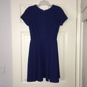 Cobalt Blue Fit and Flare Mini Dress